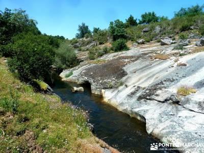 Pesquerías Reales - Monte de Valsaín; circo de gredos;puente de mayo;grupos senderismo madrid grat